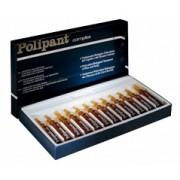 Polipant Complex Решение проблемы выпадения волос и сухой кожи головы
